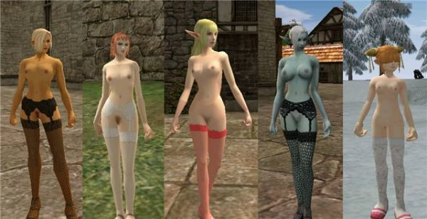 Lineage 2/ Stocking Nudepatch